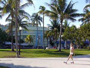 pet friendly hotels in miami beach
