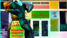 miami beach pet grooming and boarding